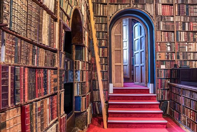 Interior librería Bardon