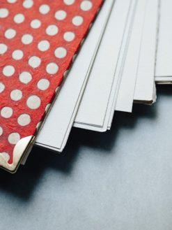 Album Rojo y puntos blancos 8