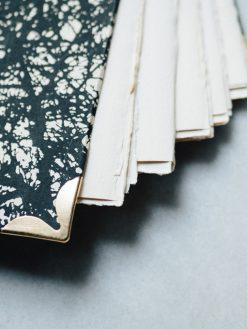 Album Pintura Bosque en negro 7