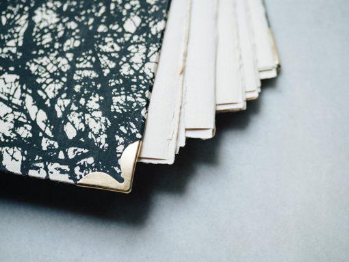 Album Pintura Bosque en negro 4