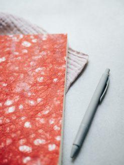 Cuaderno rojo 5
