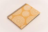 Antara golden Chip Rosetón fondo blanco 2