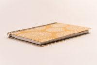 Antara golden Chip Rosetón fondo blanco 3