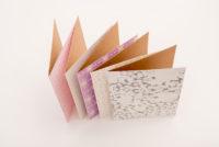 Folder Antara Pass 7 white background 2